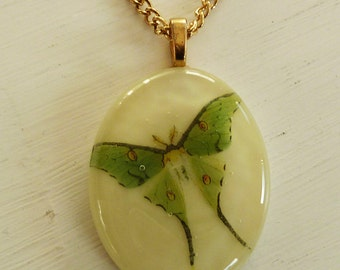 Cream, green and gold vintage butterfly print pendant in fused glass.