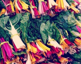 Rainbow Swiss Chard Mix - 75 seeds (Organic/non-GMO)