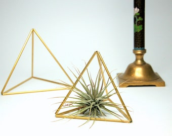 Single Medium Brass Geometric Pyramid (Himmeli) - Air Plant, Terrarium