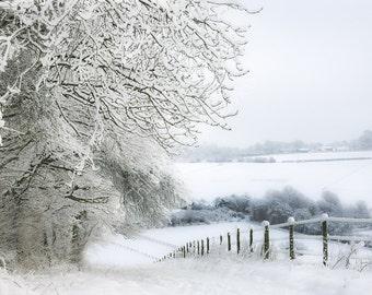 Snow Landscape Woodland England Giclee photo print photography fine art