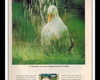 """Vintage Print Ad March 1966 : Olympia Beer Duck Wall Art Decor 8.5"""" x 11"""" Advertisement"""