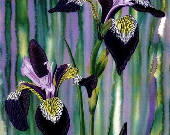 "Art Print: ""Irises at dawn"" - A4 flower print, iris painting, wall art, lilac purple art, floral art, from a painting by Liz Clarke"