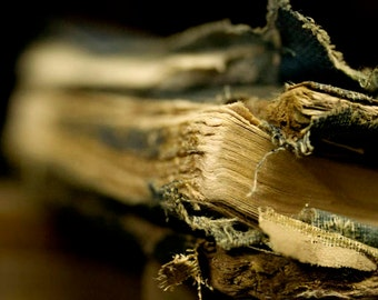 Left Behind, Macro, Book, Old, Blue, Art, Photography