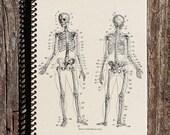 Skeletal Anatomy Journal - Skeletal Anatomy Notebook - Skeleton - Bones