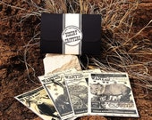Postcard set DESERT CRITTERS Gift Set of Four (4) Handmade Postcards, Wildlife Tan edition, Choose 4x6 or 5x7