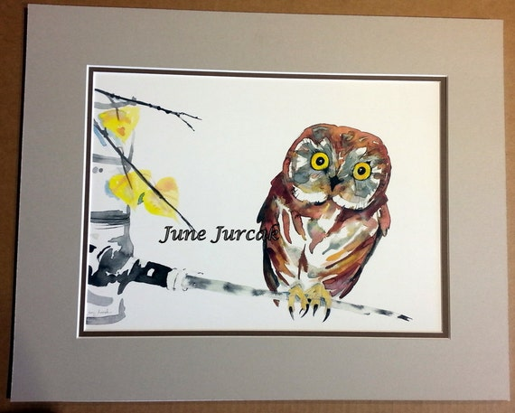 Hoot The Owl 16x20 Matted Print By June Jurcak By