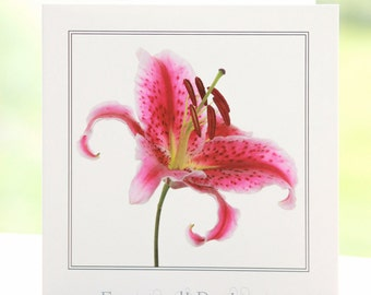 Lily flower photograph, blank inside, square greetings card