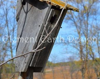 Wood Birdhouse, Instant Download, 11x14, Digital Printable, Fine Art Digital Photo, Photography, nature walk, landscape