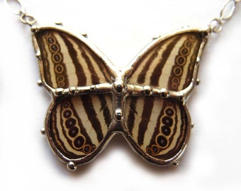 Real Butterfly Necklace - Earthy Fall Colors with Spots and Stripes