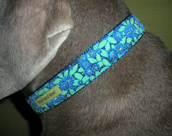 Rhody Collar or Leash in Blue and Green