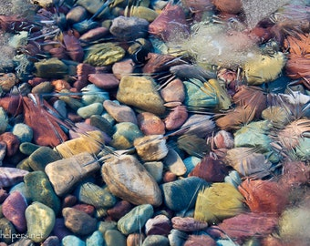 Montana Rocks, Colorful Rocks, Nature's Easter colors, Rocks under Ice, Photograph or Greeting card