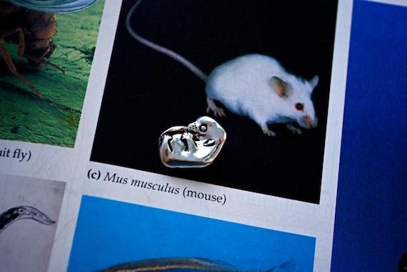 Ready to Ship: Mouse Embryo Pendant