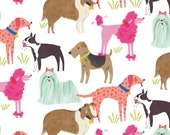Pedigree White Fabric by Maude Asbury - Dogs - The Best in Show Collection - Blend Fabrics - 1 -  One Yard Fabric