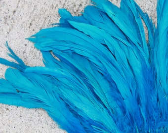 Coque feathers 6 to 8 inch in length in Turquoise, rooster tail feathers-tahitian costume