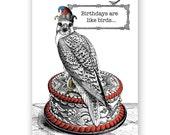 Birthdays Are Like Birds - Card - Falcon - Humor - Funny - Cake