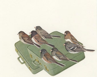 Juncos with baggage. Collage print by Vivienne Strauss.