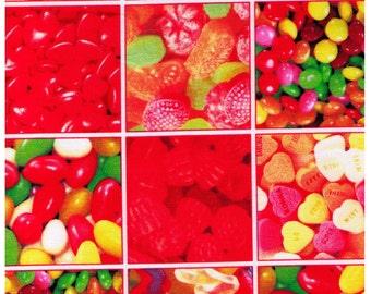 HALF YARD - Photo Realistic Candy, Jelly Beans, Hearts, Skittles, Gummies - Oxford Cotton - Kokka, Japanese Import