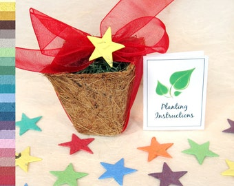 50 Plantable Pots - Kids Birthday Party Seed Favors - Unique and Personalized - Seed Paper Favors Kit