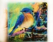 Spring returns, Bluebirds, wood mounted photo, mixed media photo, 4x4 inches, little gifts, art, gift under 30, bird art, miniature art