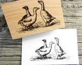 Duck Goose Bird Rubber Stamp // Farm Animal Rubber Stamp //  - Handmade by Blossom Stamps