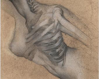 X-Ray Babe-Original Drawing