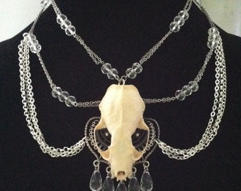 Real Taxidermy Muskrat Necklace