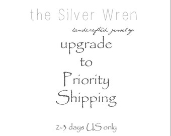 USA - Upgraded Shipping - Priority mail- 2-3 days delivery after item is shipped