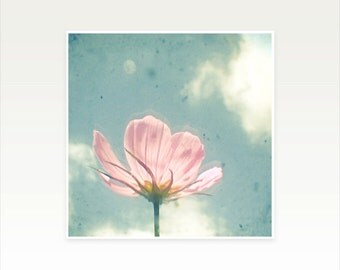 Pink Flower Photography, Nature Photography, Flower Art, Shabby Chic Decor, Bedroom Art, Summer, Floral, Pastels - Pink Cosmos
