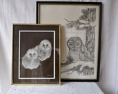 Two Snowy Owl Prints/Vintage 1970s/Signed Black and White Prints