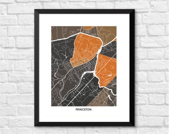 Princeton New Jersey Art Map Print.  Color Options and Size Options Available.  Perfect for your Princeton University Grad.