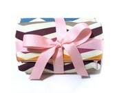 zip pouch set - chevron stripe
