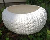 Planter, sea urchin, shell, ceramic, beach decor, round, semi-matte white