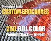Brochures - CUSTOM FULL COLOR Quantity of 250