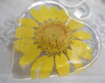 Yellow Daisy Pressed Flower Glass Heart Pendant-Symbolizes Loyal Love-Heart Full of Sunshine-Nature's Wearable Art-Gifts Under 25