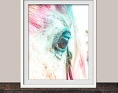 Watercolor Inspired Snowy White Horse for the Horse Lover