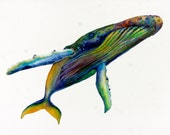 Signed Print or Cards of my Original Watercolor - Humpback Rainbow Whale