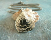 She Sells Seashells. Silver Oyster Shell Necklace. Sterling Silver. Summer Fashion Jewelry