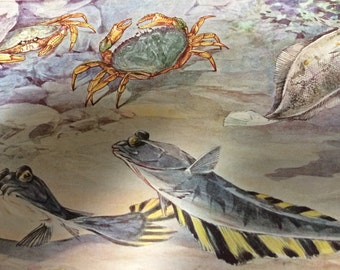Circa 1938 Hashime Murayama  cock-eyed flatfish market crab and starry flounder fish .Vintage print plate fourteen.