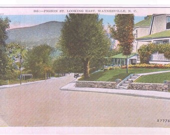 Pigeon Street Waynesville North Carolina postcard