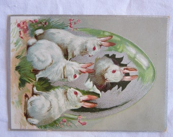 vintage EASTER postcard - early 1900s- egg with white rabbits - 3.5 x 4.75 inches