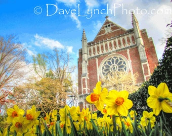 Cannon Memorial Chapel - University Of Richmond VA - HDR - Art Photography Print by Dave Lynch - Free Shipping on any additional purchase