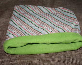 LARGE green with striped pouch for small pets