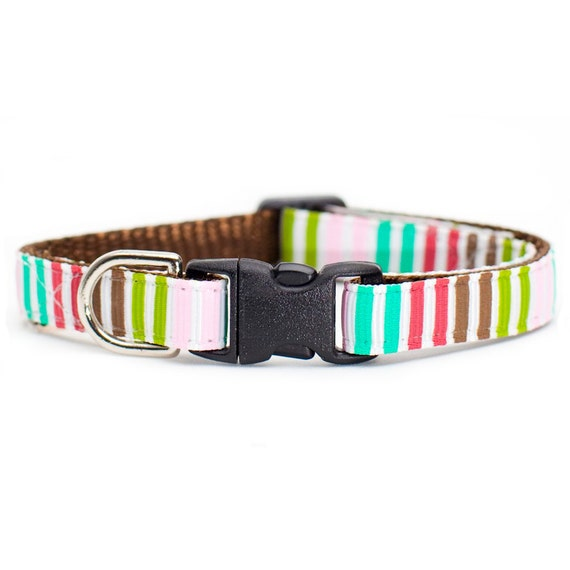 """Cat Collar - """"The Good Intentions"""" - Multi-Colored Stripes"""