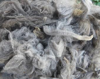Merino Wool Locks / Ultra Fine / Raw Wool