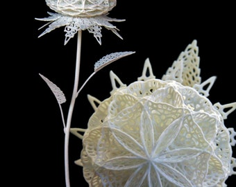 Fiore Unidicesimo - 3d Printed Filigree Flower by Joshua Harker
