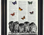 BOGO Sale Owls  Dictionary Art Print with A HHP Original with HHP Signature Butterflies Wall Decor Dictionary Print Dictionary Prints