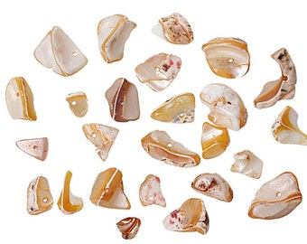 "Shell Beads in Pale Earth tones sized from 7mm to 13mm (1/4"" to 1/2"") 100g or 3.5 oz - BD643"
