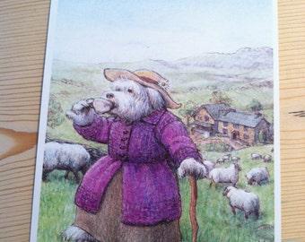 Signed Print, Hill Top Farm Sheepdog Illustration