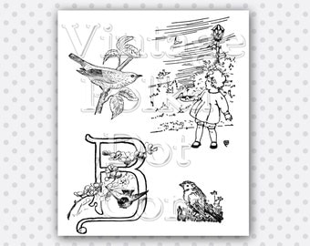 Clip Art Bird Vintage Graphics Clipart Nature Printable Digital Collage Sheet Instant Download Scrapbooking