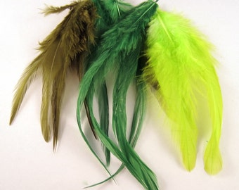 50 Feathers assorted Green saddle hackles 3 to 6 inches craft feathers k142
